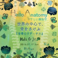 HelloAnatomy13-eye