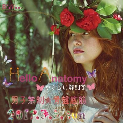 HelloAnatomy15